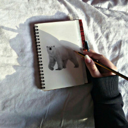 polarbearstickerremix freetoedit