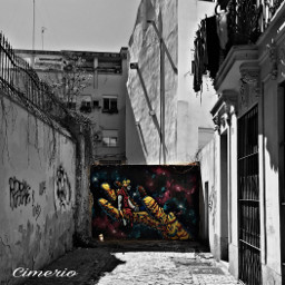 graffiti streetart valencia spain oldtown