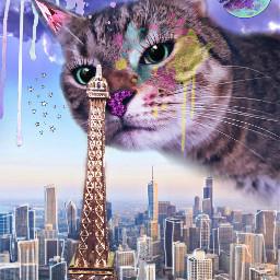 freetoedit remix cat diamonds moon