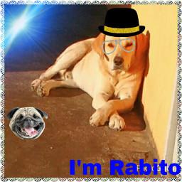 rabito