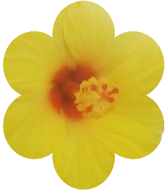 freetoedit sticker flower yellow