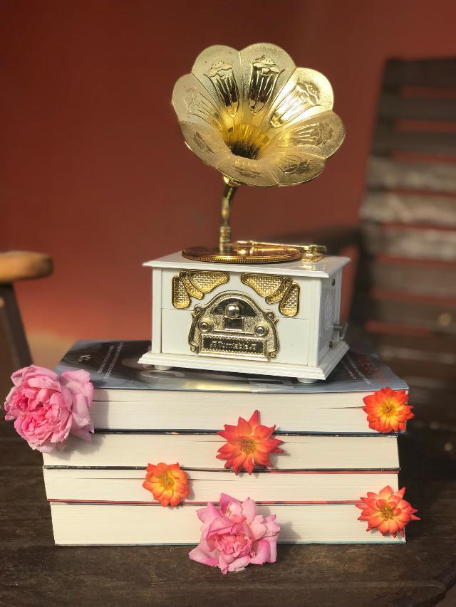 #book #bookslover #vintage #livros