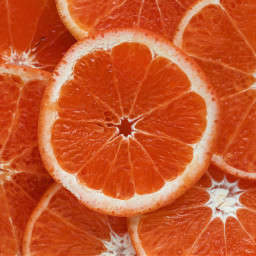 freetoedit orange fruits background yummy