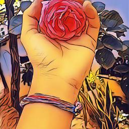 dcflowery flowery