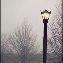 edu edinborouniversity foggy streetlight misty