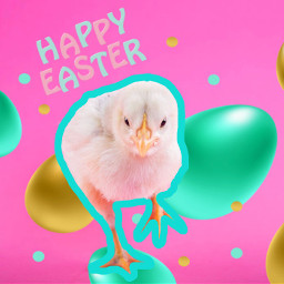 freetoedit easter chick