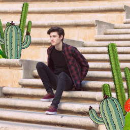 cactus friends man people photography freetoedit