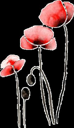 flower sticker freetoedit