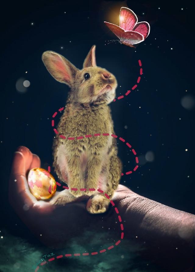 #freetoedit #happyeaster #bunny #butterfly
