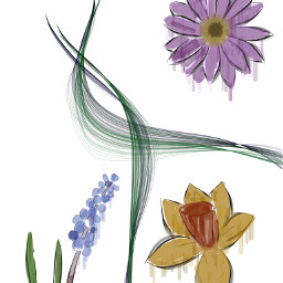 dcaestheticplants aestheticplants freetoedit painted flower
