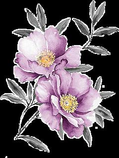 kpopflowers flowers pinkflowers wathercolorflower freetoedit