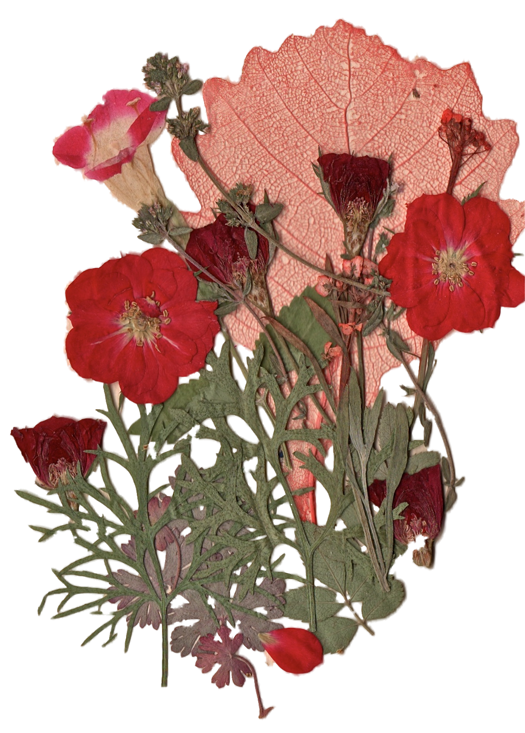 Flowers Bunch Aesthetic Vintage Tumblr Roses Pink Red