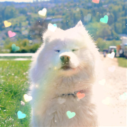 bokehheartbrush freetoedit remix heartbrush cute