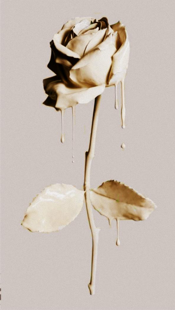 #pink_roses #edit #yellow_roses Follow me❤