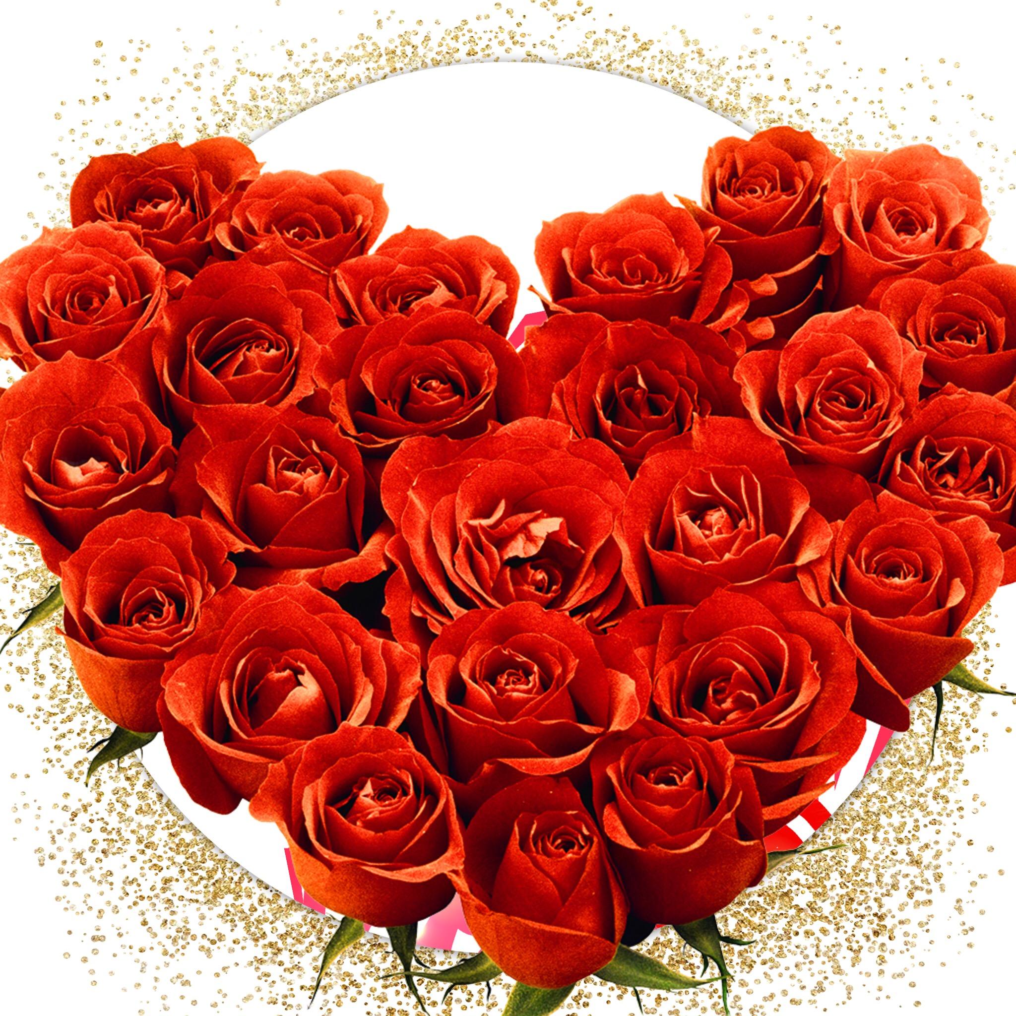 Картинка розы для тебя оля