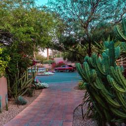 arizona hotel travel travelblog photography freetoedit