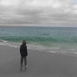california lagunabeach waves boy pacificocean freetoedit