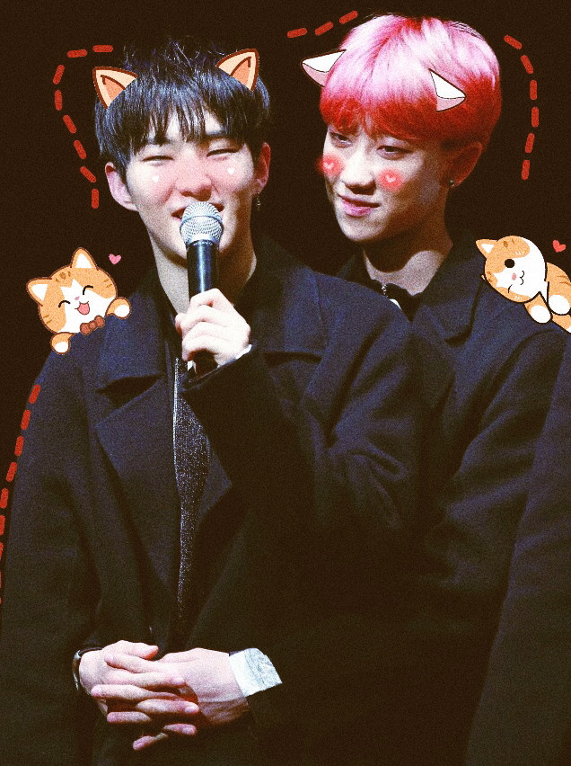 #soonhao #soft #seventeen #soonyoung #kpop #the8 #kittens #cute #hoshi #svt #babys #love #h8shi #minghao #freetoedit