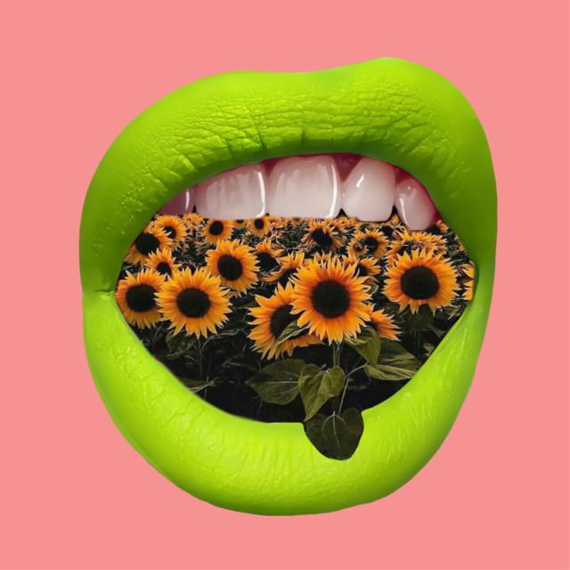 #freetoedit #mouth #green #lips #field #fieldsofgold #sunflower #interesting #art #surreal #realisnotfun #madewithpicsart #edit #myedit #myart