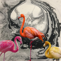 flamingo pink orange yellow marble freetoedit