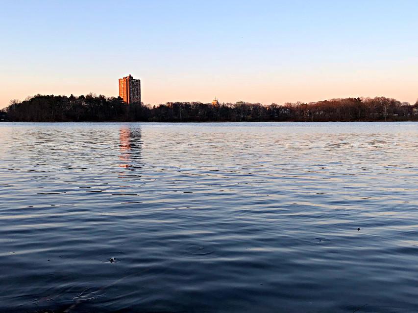#freetoedit #goldenhour #reflection #water #pond #lake #ripples