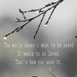 earthdayeveryday mymondaymotivationalquotes loveyourworld embracenaturaroundyou branches
