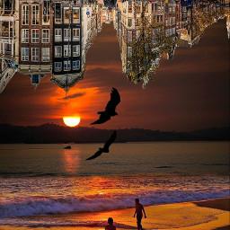 freetoedit upsidedownart beachside sunset blending
