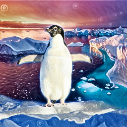 freetoedit penguin arctic colors ircpenguin