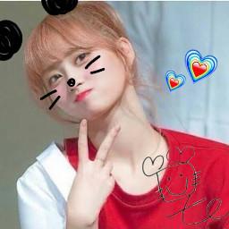 freetoedit twice momo panda red