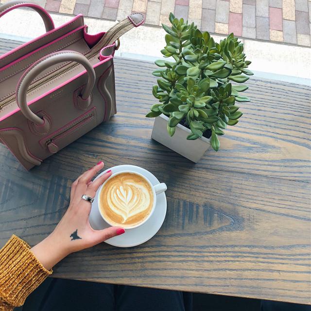 Monday essentials 🌵☕️ #originalphoto  #photography #pretty #coffee #coffeecup #mondaymood #monday #fwis #coffeetime #coffeelover #coffeebreak #coffeeart #foodie #foodlovers #mood #interesting #fwis #coffeeaddict #lifestyleblog #coffeecup
