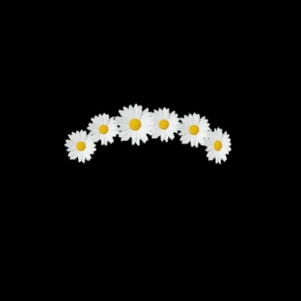 Crown flowercrown crown filter overlay overlays editing crown flowercrown crown filter overlay overlays editing izmirmasajfo