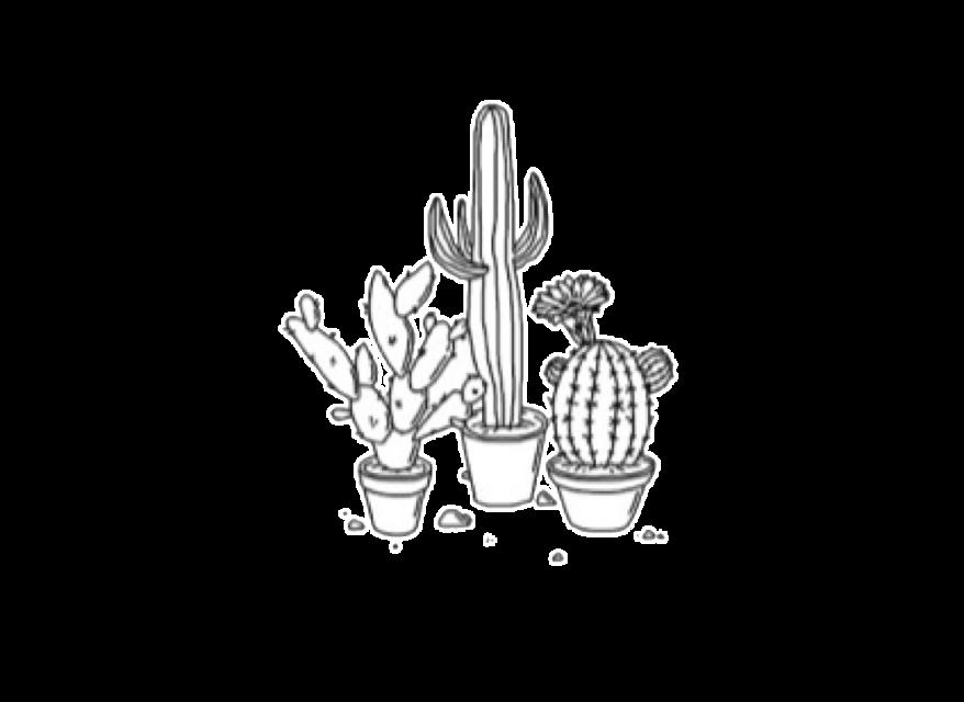 #cactus #tumblr #drawing #plants #edit #freetoedit