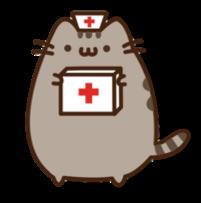 pusheen nurse aid cat medicin