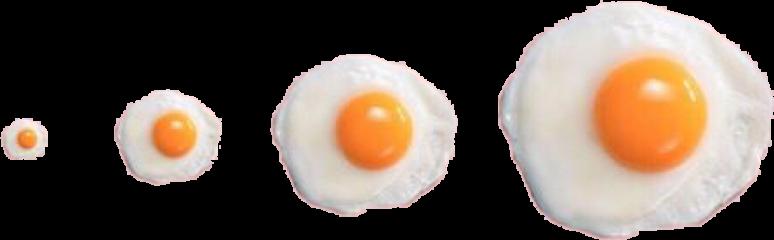 scsunnysideup sunnysideup egg freetoedit