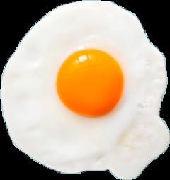 egg freetoedit scsunnysideup sunnysideup