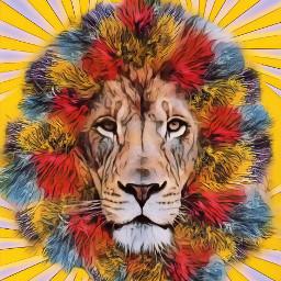 freetoedit irccolorfulbasket colorfulbasket lion colorful