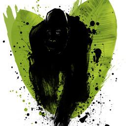 gorilla palms africa wildanimal splatter