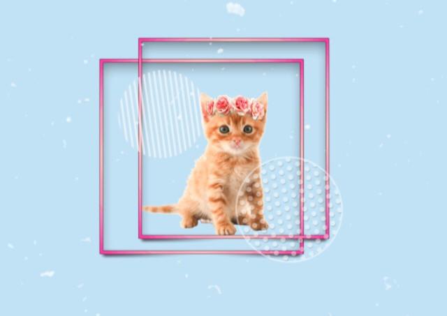Hope you guys like it! ❤️❤️ #cute #kitten #cat #animals #pastel #blue #flower #flowercrown #aesthetic