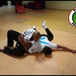 freetoedit hapkido karate defensa