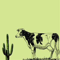freetoedit artisart interesting cactus eatyourgreens