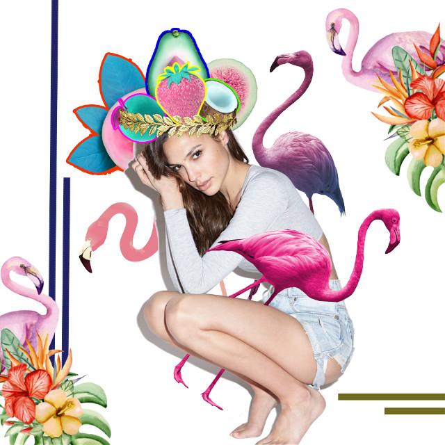 #Picsart#picsartedit#gal#galgadot #wonder#woman#ww#brave#flamingo #pretty#love#birthday#picsart#edit#design#picsartedit#marvel#dc#comics