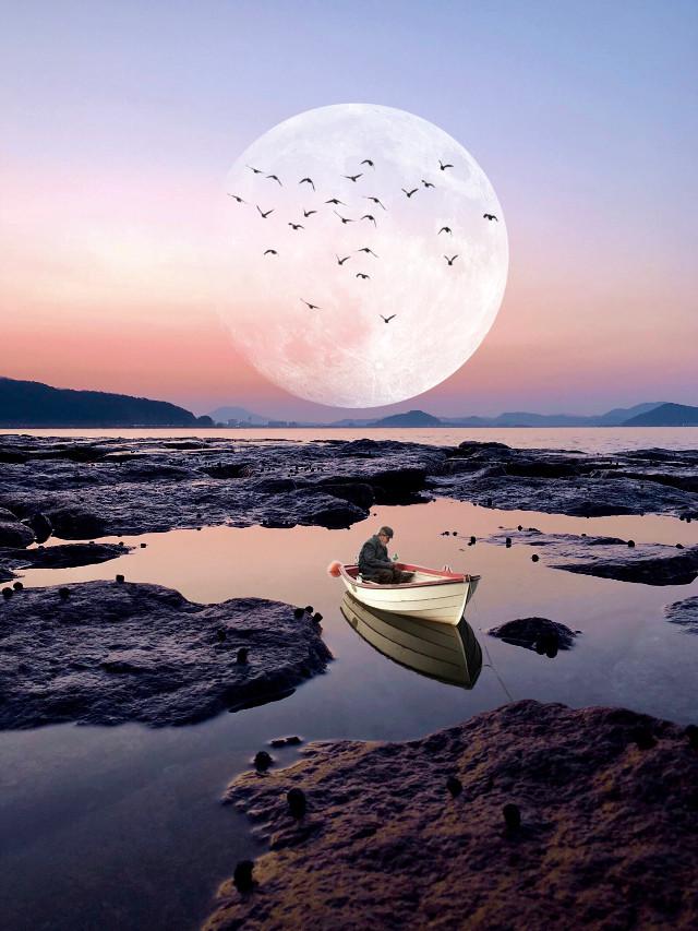 #freetoedit #moon #birds #sunset #sea