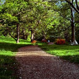 freetoedit path garden