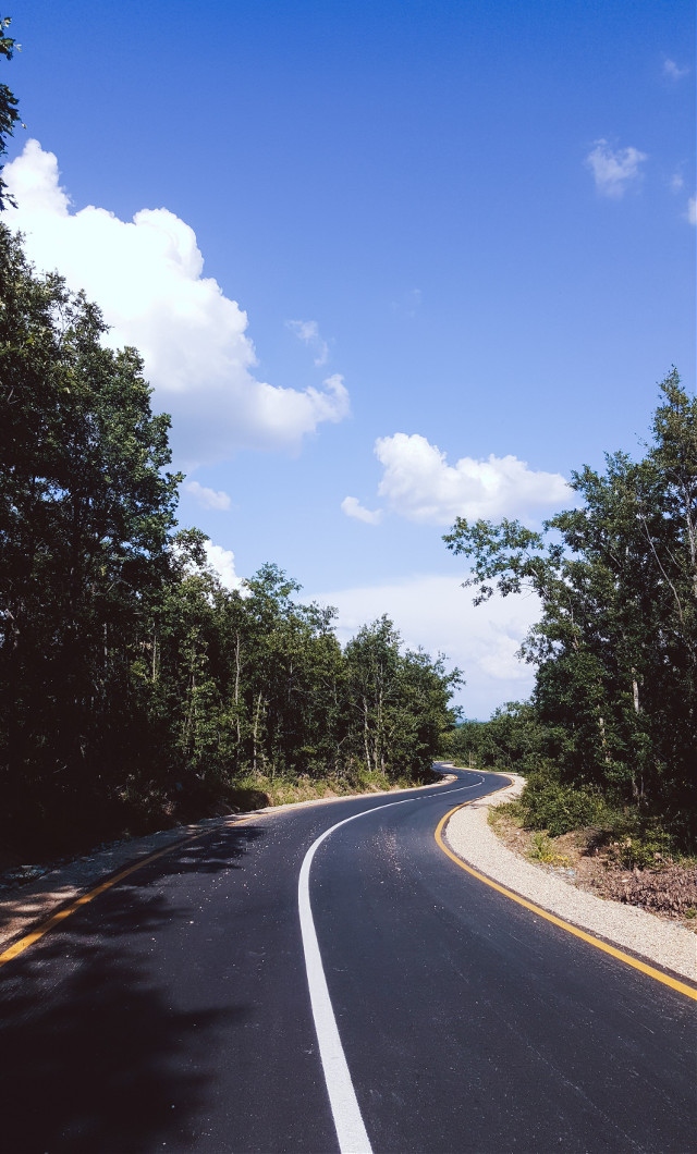 """#freetoedit I missed the """"on the road"""" challenge 😵 #road #forest #sky #green #blue @picsart"""
