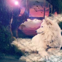 ircdog dog freetoedit dailyremix dailyremixmechallenge