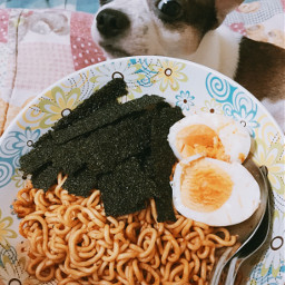 freetoedit interesting food foods noodle