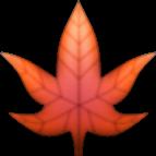 #leaf #autumnleaf #hoja #otoño #emoji #emojis