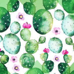 ecshapemask shapemask cactus art watercolor freetoedit
