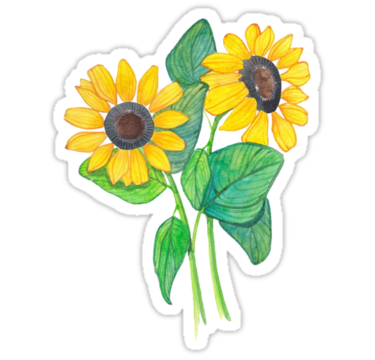 #sunflower #girasol #flower #tumblr #cute #summer #girl #yellow