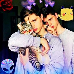 brothers tumblr boys cat freetoedit